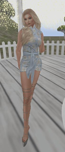 Vinc Wrap Dress_001